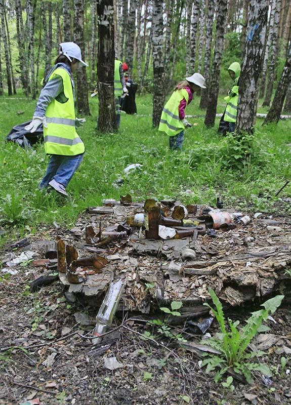 Уборка леса_03