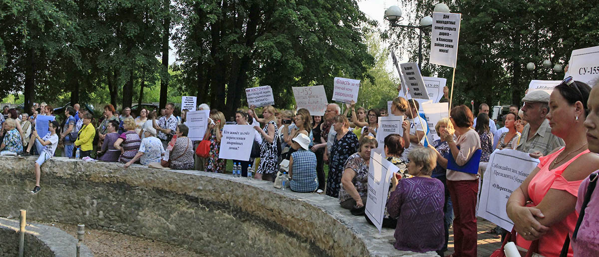 Митинг в Звенигороде (8)