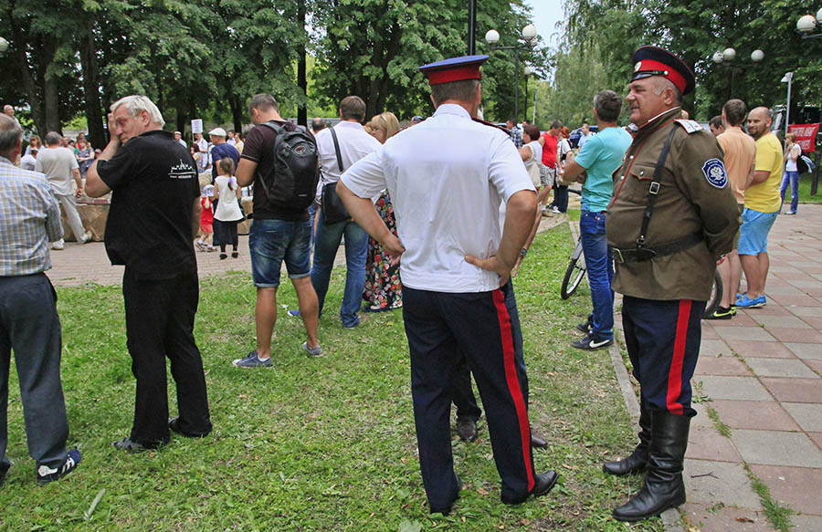 Митинг в Звенигороде (10)