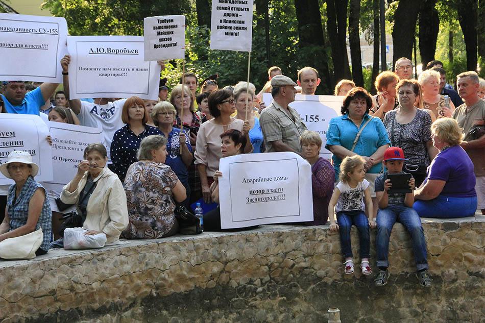 Митинг в Звенигороде (14)