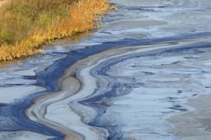 розлив нефти в белой