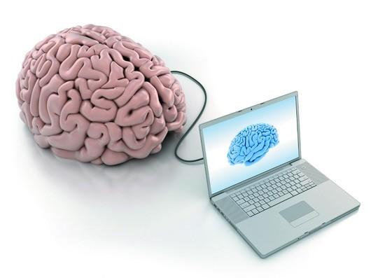 brain_a1