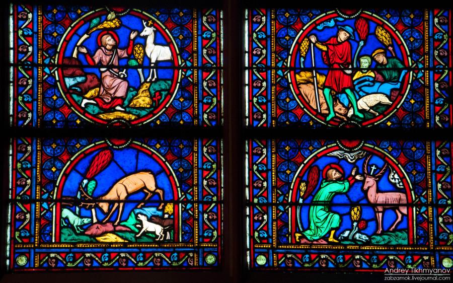 Notre Dame de Paris vitre-0260