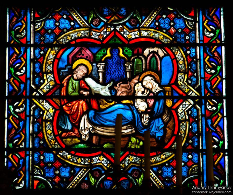 Notre Dame de Paris vitre-0293
