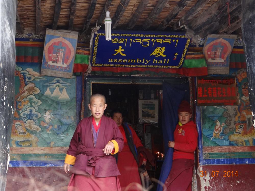 nepal-kina 461
