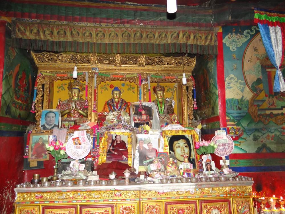 nepal-kina 462