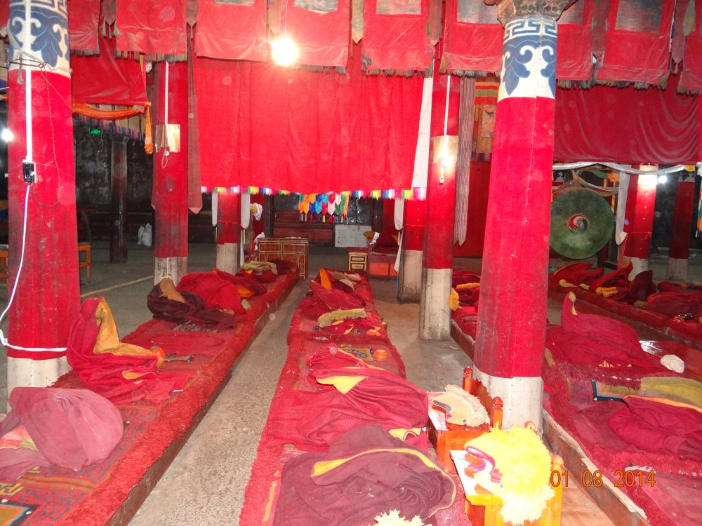 nepal-kina 534