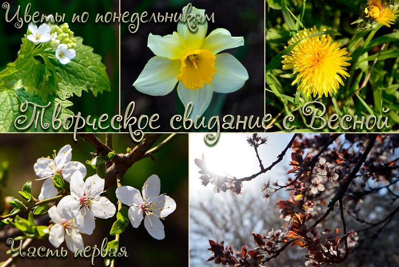 ts5_oblojka1.jpg