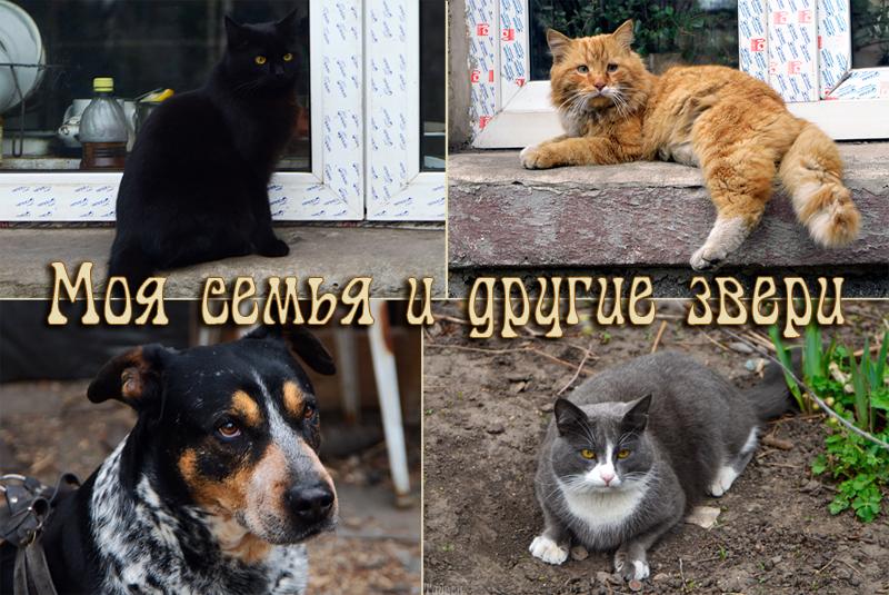 zverinec_oblojka.jpg