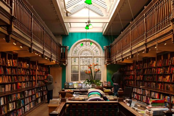 biblioteka-golie-tsiniki