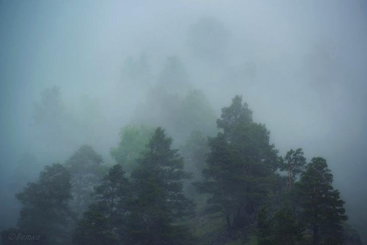 033_Дожди