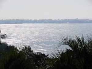 40. Вид на Батуми из ботанического сада