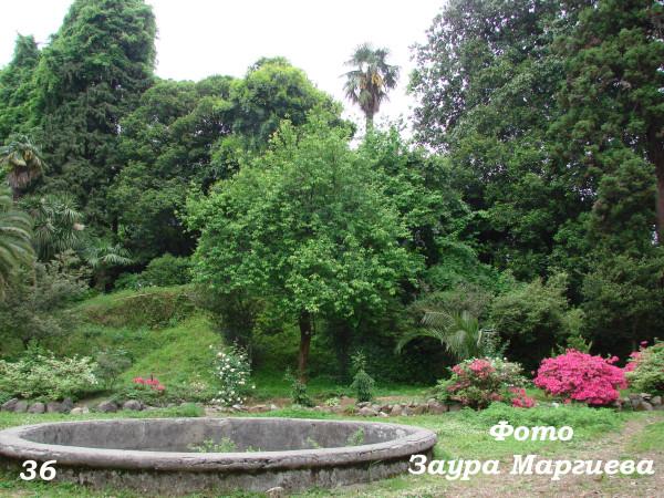 9. Зеленый мыс. Ботанический сад. Вид дачи сегодня. 28. 04. 08