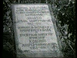 102. Основателю ботанического сада и его первому директору А. Краснову.