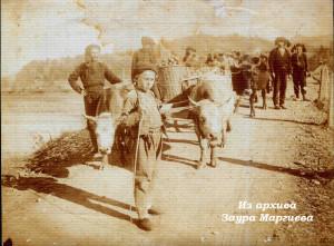 21. Крестьяне везут на арбах мандарины.