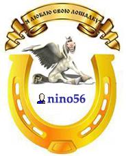 nino56