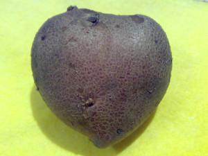 картофельное сердце_001