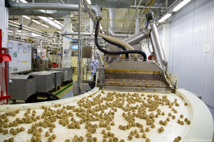 ZAVODFOTO из ЖЖ: Шоколадная фабрика «Россия»