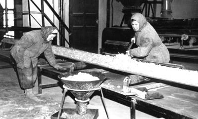 26 Опробование хризотила с транспортерной ленты на обогатительной фабрике № 4. 1957 г. (Ураласбест)