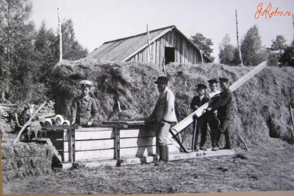 22 заготовка фуража для заводских лошадей