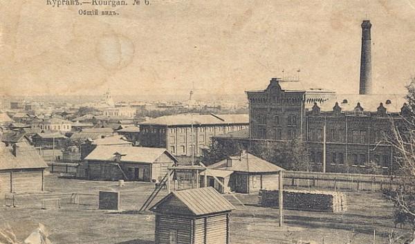 17 Курган. Общий вид.  1917 год.