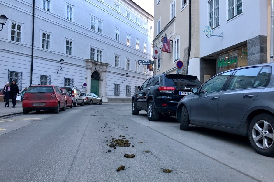 Ужасающие картинки новогоднего Зальцбурга