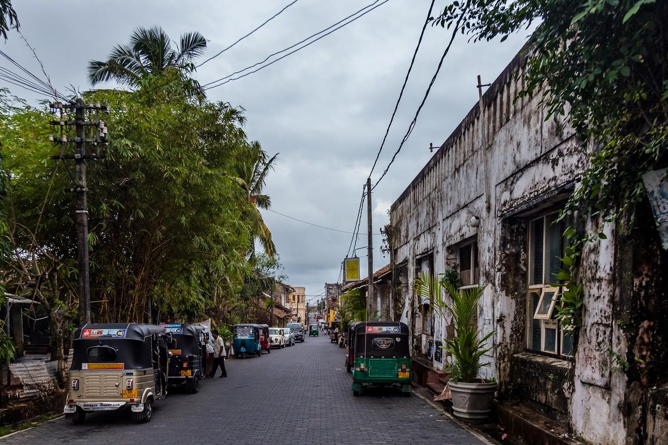 Шри-Ланка. Часть 1. Унаватуна, Галле и тропический лес Синхараджа фото