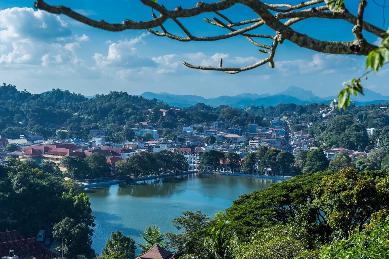 Шри-Ланка. Часть 4. Канди. Место для свиданий с неприличными растениями и купание черного слона.