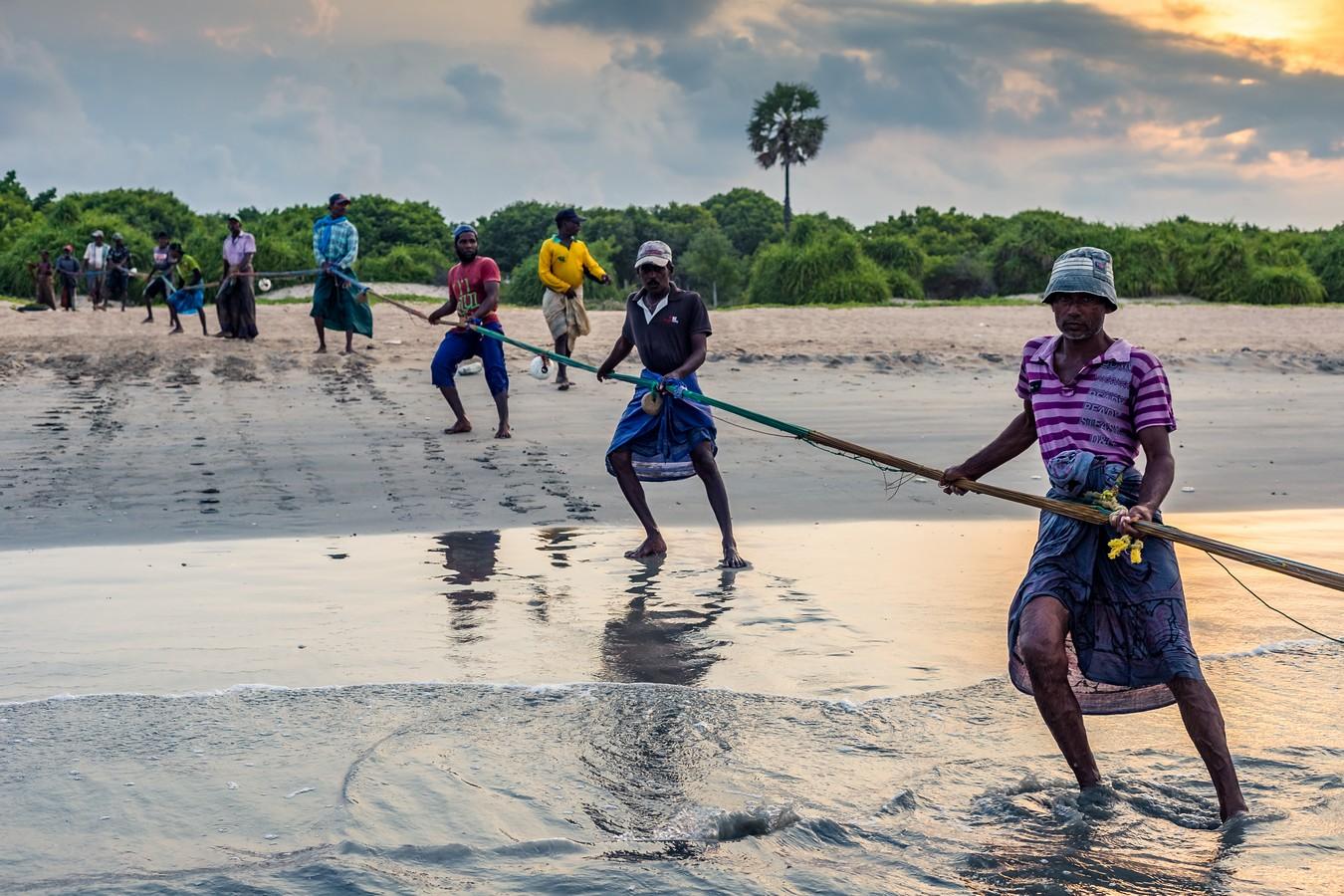 Шри-Ланка. Часть 5. Сигирия и Нилавелли. Храмы и рыбаки. фото