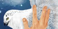 HarryHedwig07-(final)-thumb