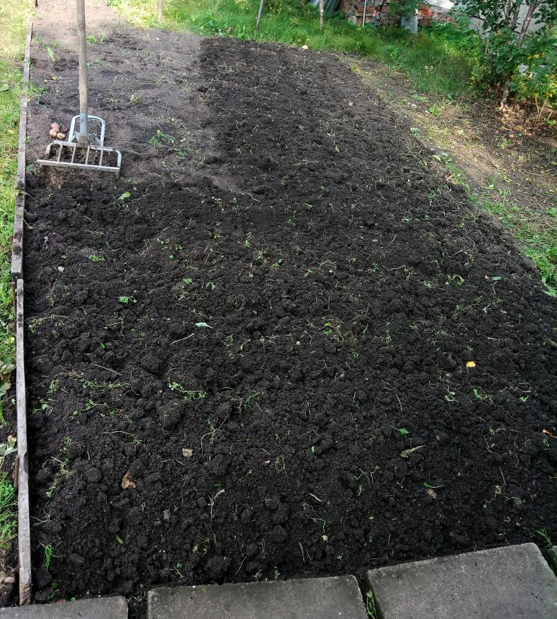 Участок где росла картошка и рыхлитель
