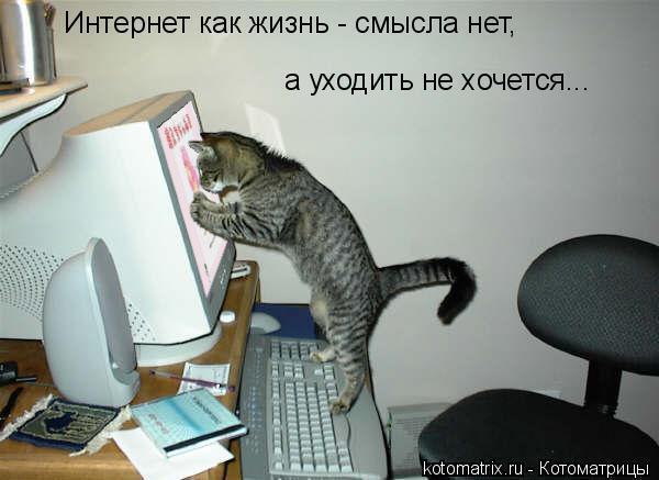 44853329__1083A1