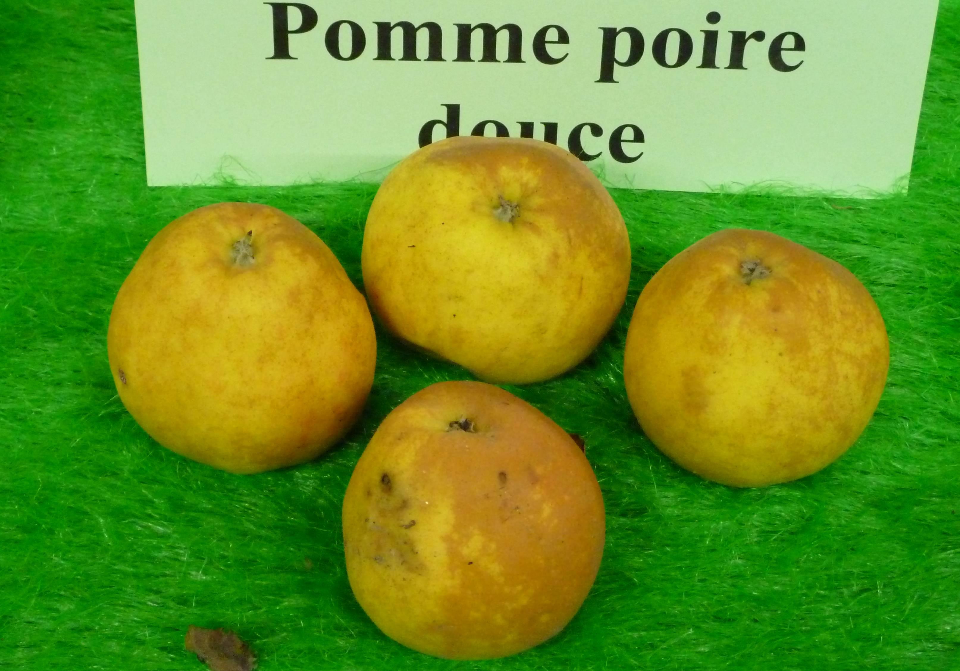 Pomme_Poire_Douce