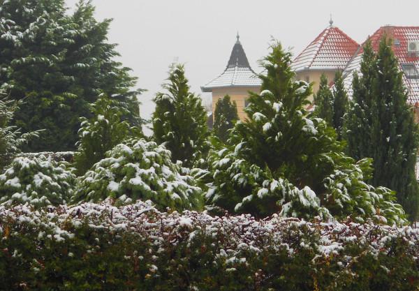 снежок-1