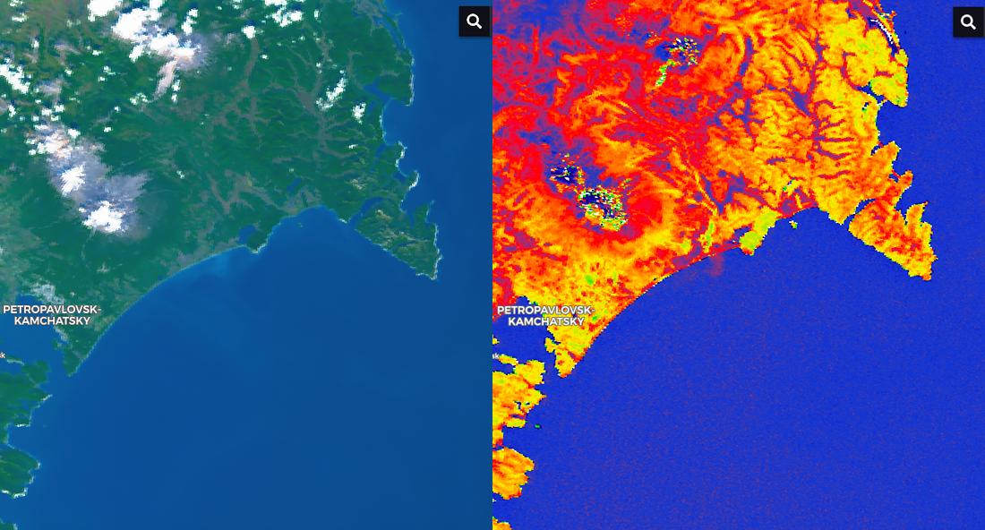 Камчатские пляжи отравили водоросли? Взгляд из космоса
