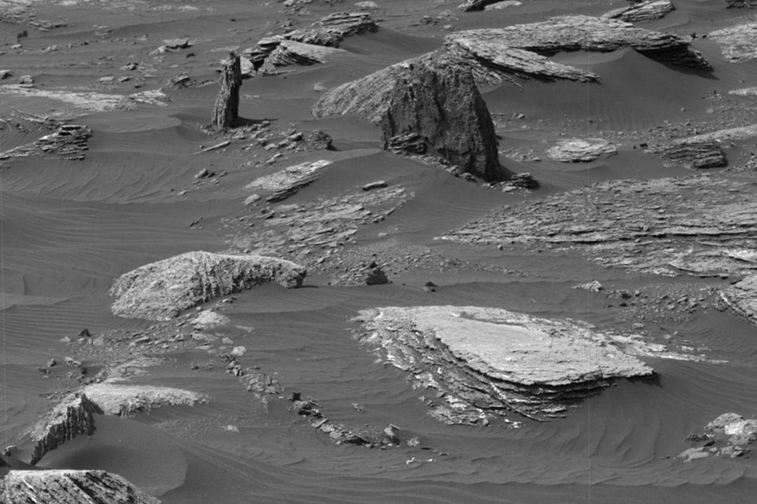 Деревьев на Марсе не обнаружено