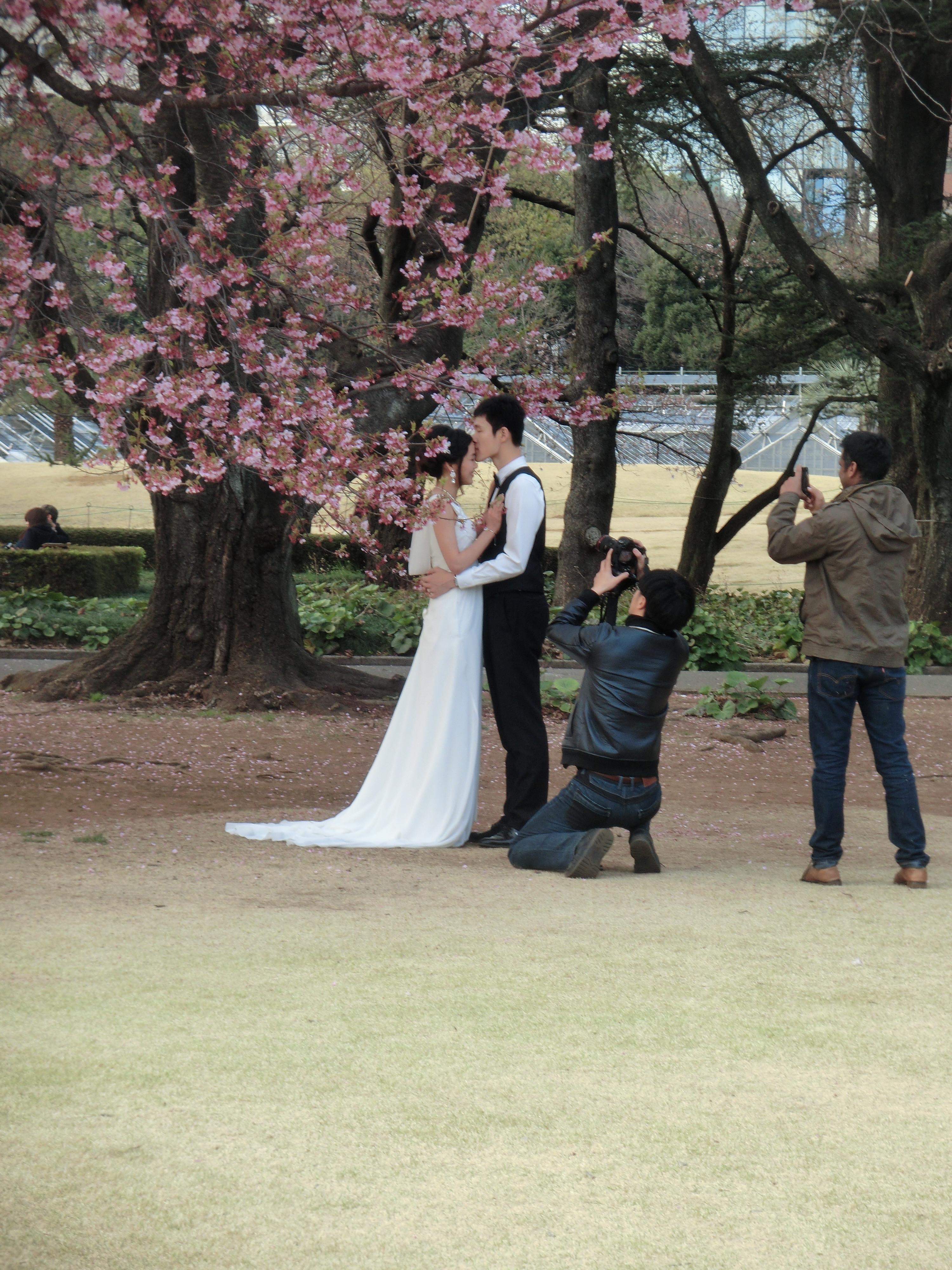 Японская жена изменяет мужу 3 фотография
