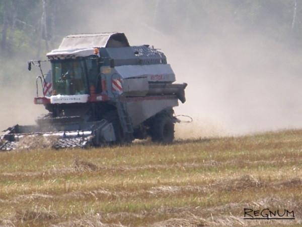 Как братья Магомедовы уничтожали российских аграриев