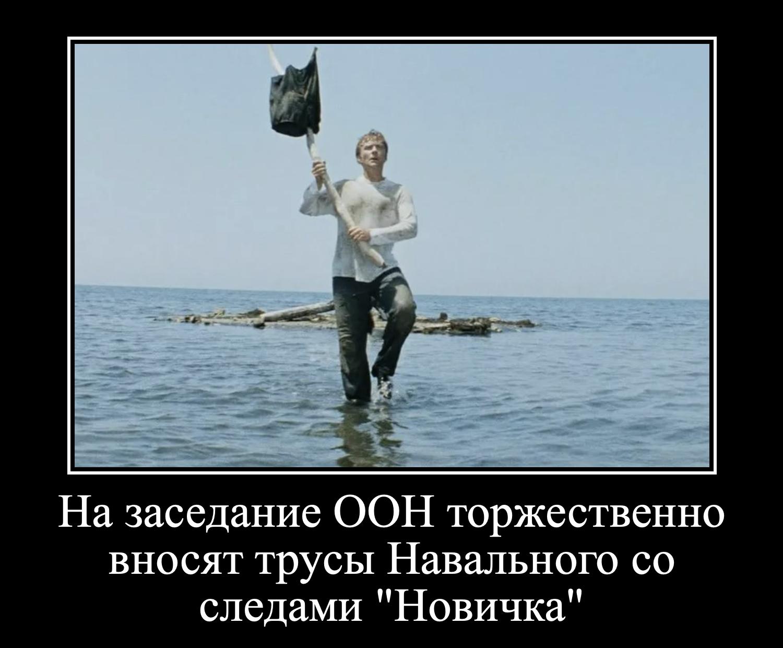https://ic.pics.livejournal.com/zergulio/14338131/6657760/6657760_original.png
