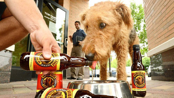 bowser-beer-for-dogs-1