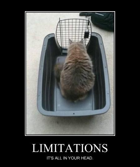 limitationscat