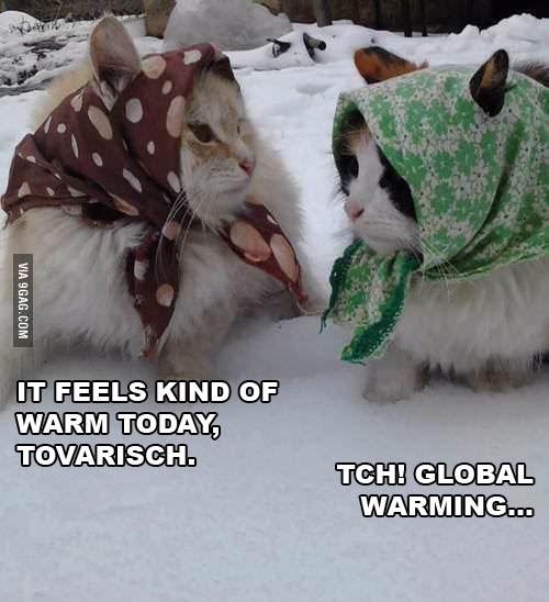 tovarischcats
