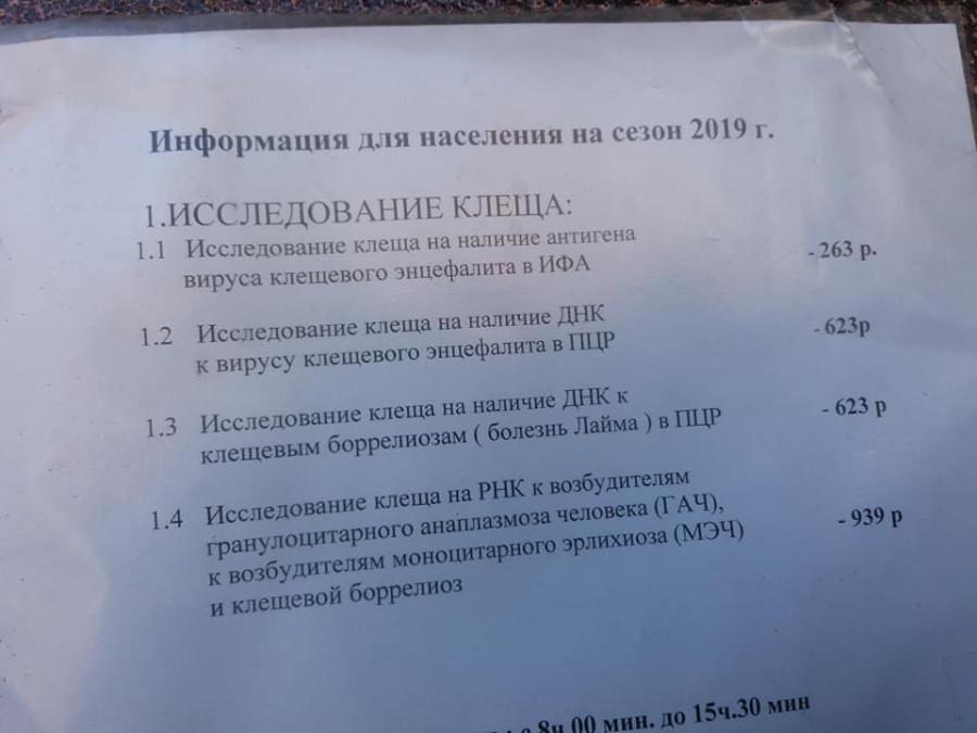 Куда выстроились очереди на Урале?