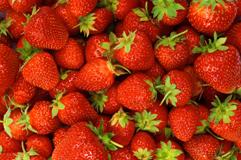 08_Strawberry