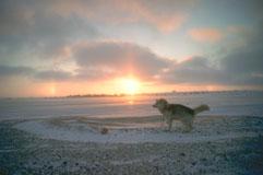 03_Sunrise