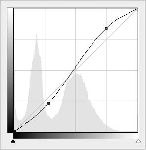25_Gray_Cat_Curves