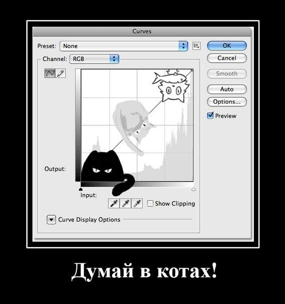 26_Cats