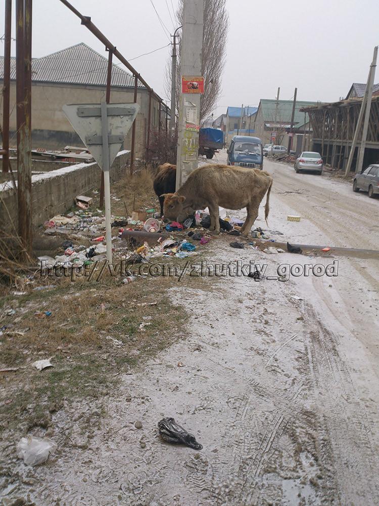 Дагестан, Махачкала, Семендер