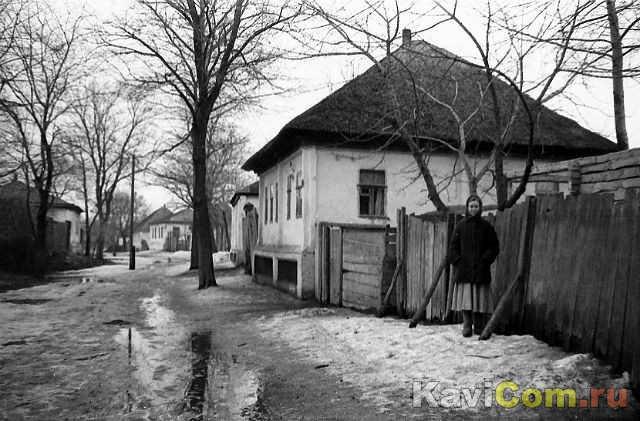 стрелецкая 1960е