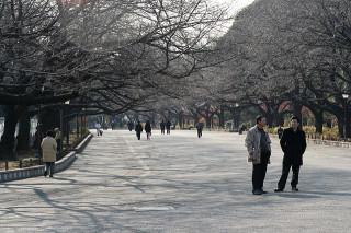 Ueno walkway